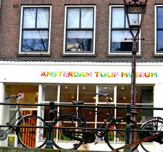 Amsterdam Tulip Museum
