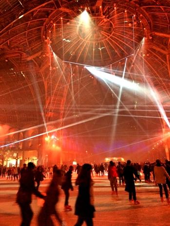 Le Grand Palais Ice Skating