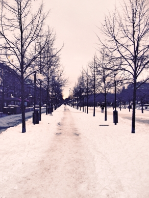 Snow covered road Stockholm
