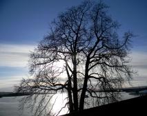 Oslo Harbour