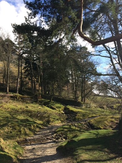 Walking to Howtown, Lake District