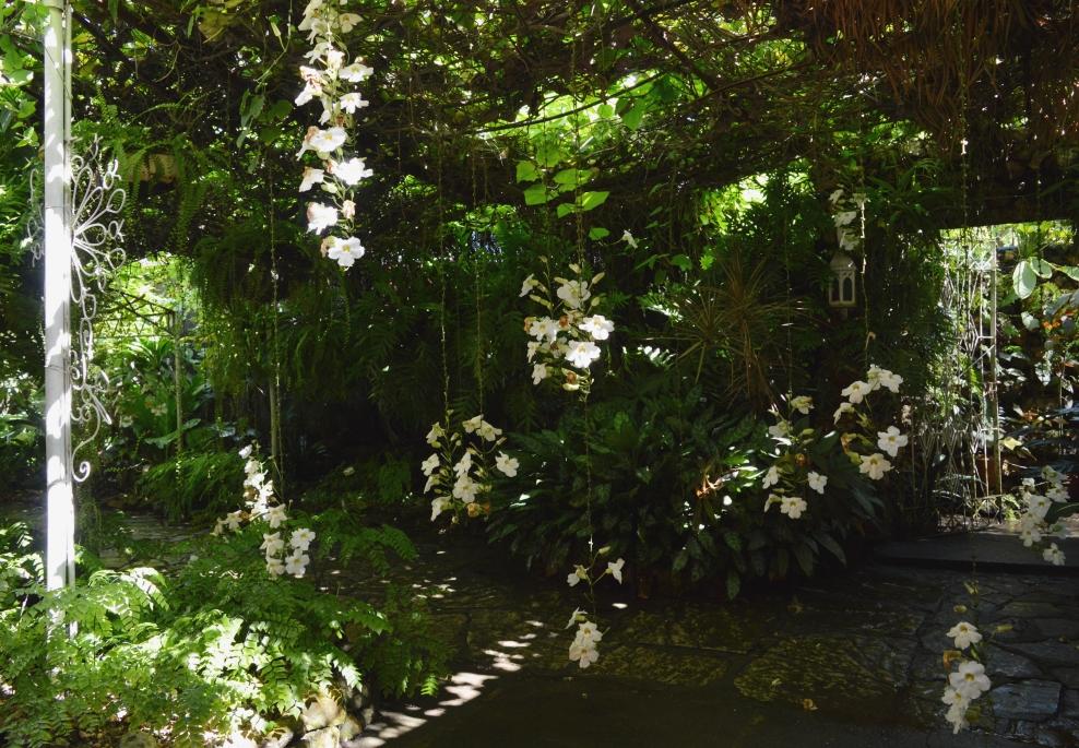 Jardin de los Helechos, Santiago de Cuba, Cuba.jpg
