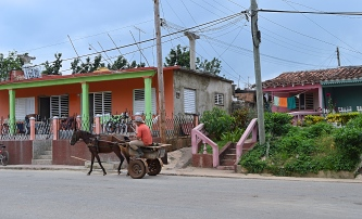 Cuban Cowboy, Vinales, Cuba
