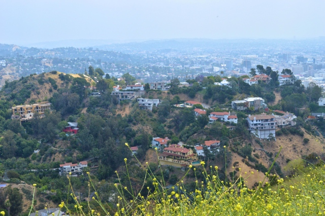 View from Runyon Canyon Park, Los Angeles, USA